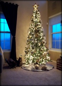 ...And our cat, Cosmo checking out the tree? :)
