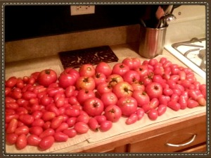 Tomatoes from the garden!